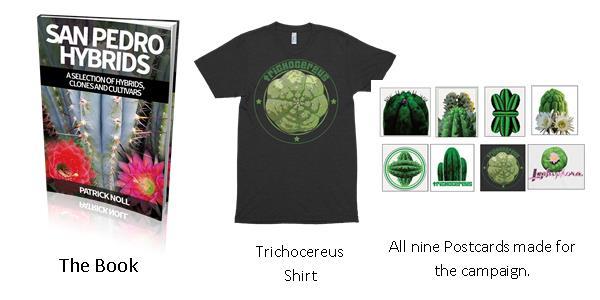 Trichocereus books Volume 1+2 bundle Echinopsis book cactusbook 33