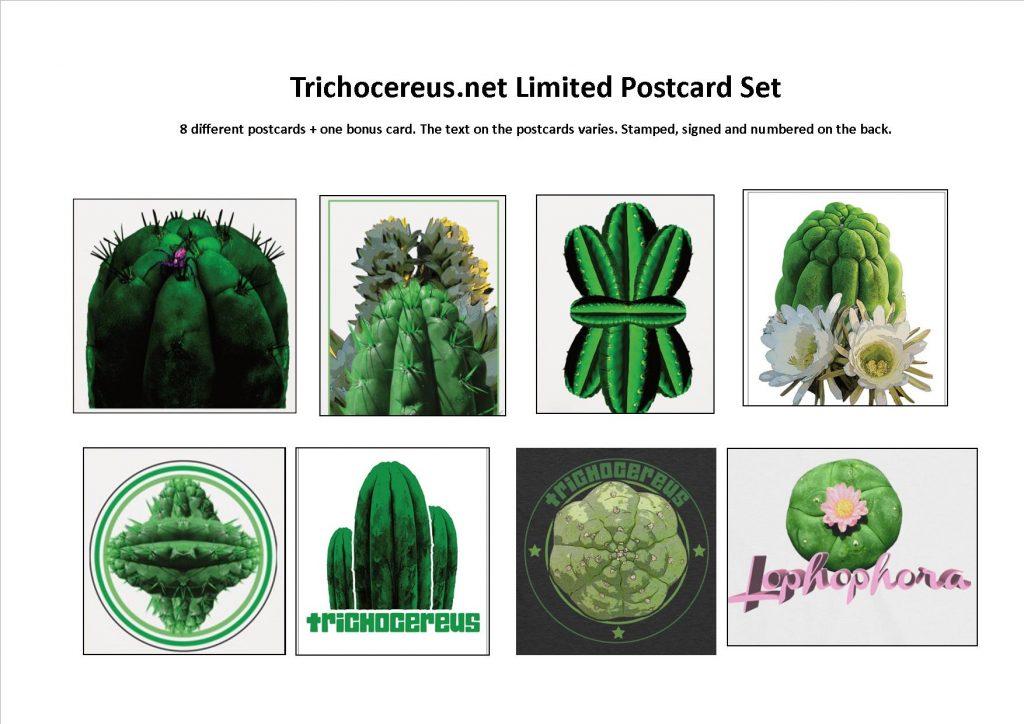 Trichocereus postcards Echinopsis book cactus cacti