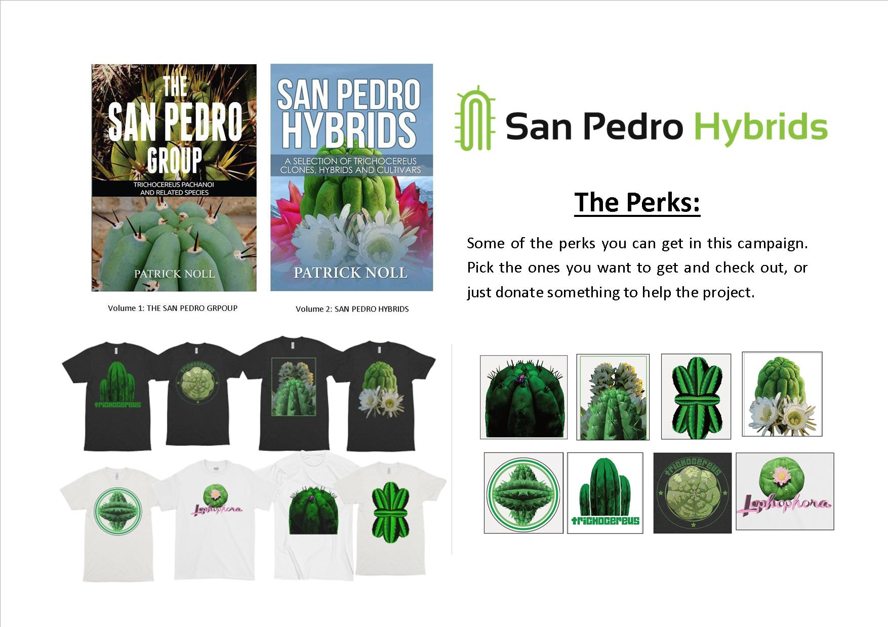 get-the-second-trichocereus-book-san-pedro-hybrids-now