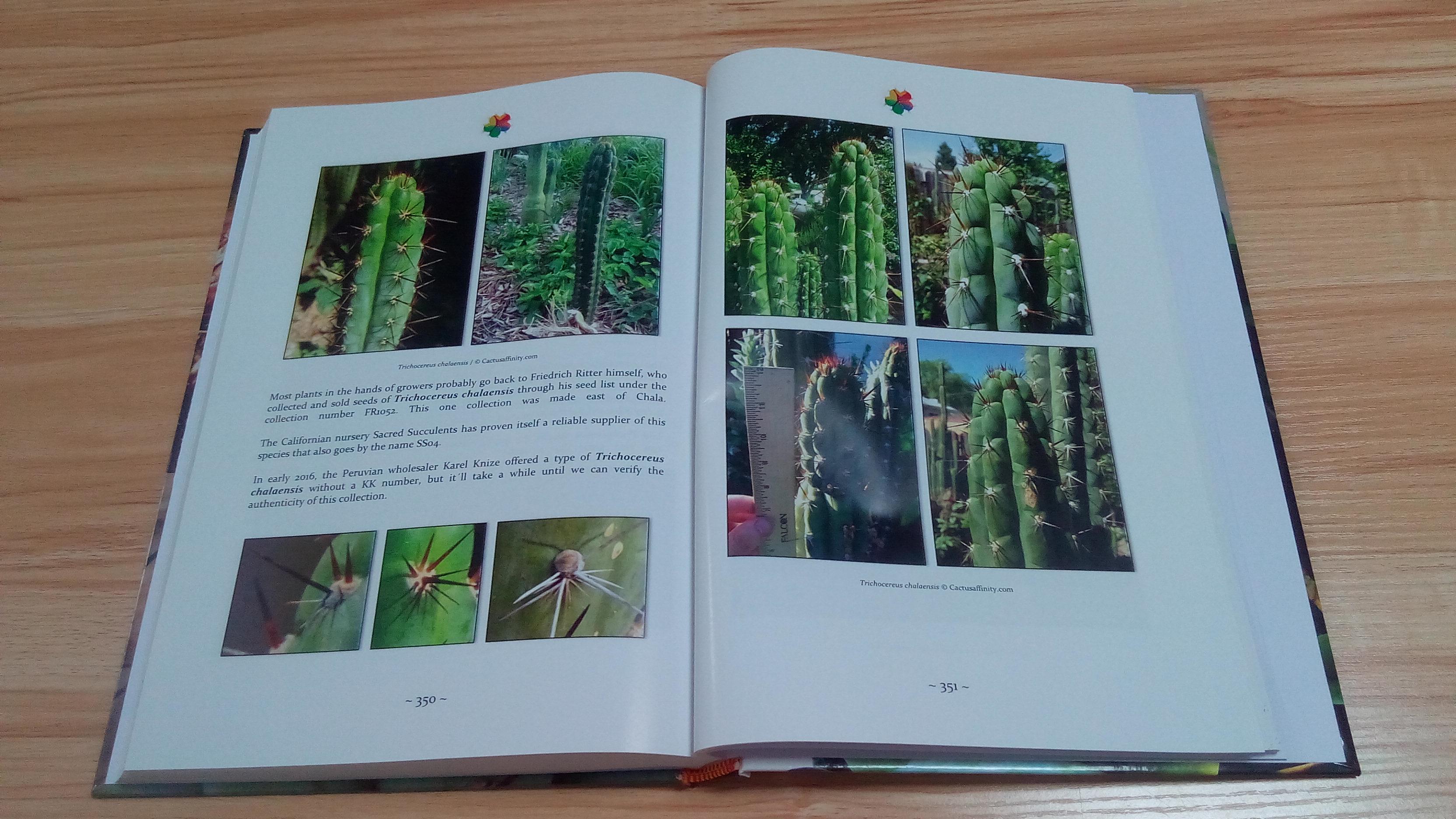 Trichocereus book Volume 1 Echinopsis cactus book  5