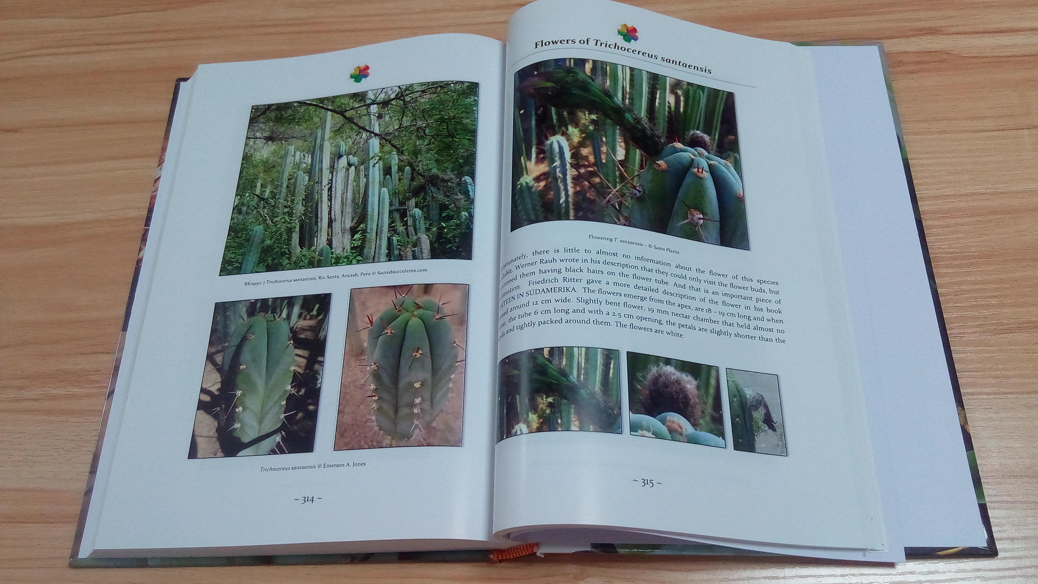 Trichocereus book Volume 1 Echinopsis cactus book 7