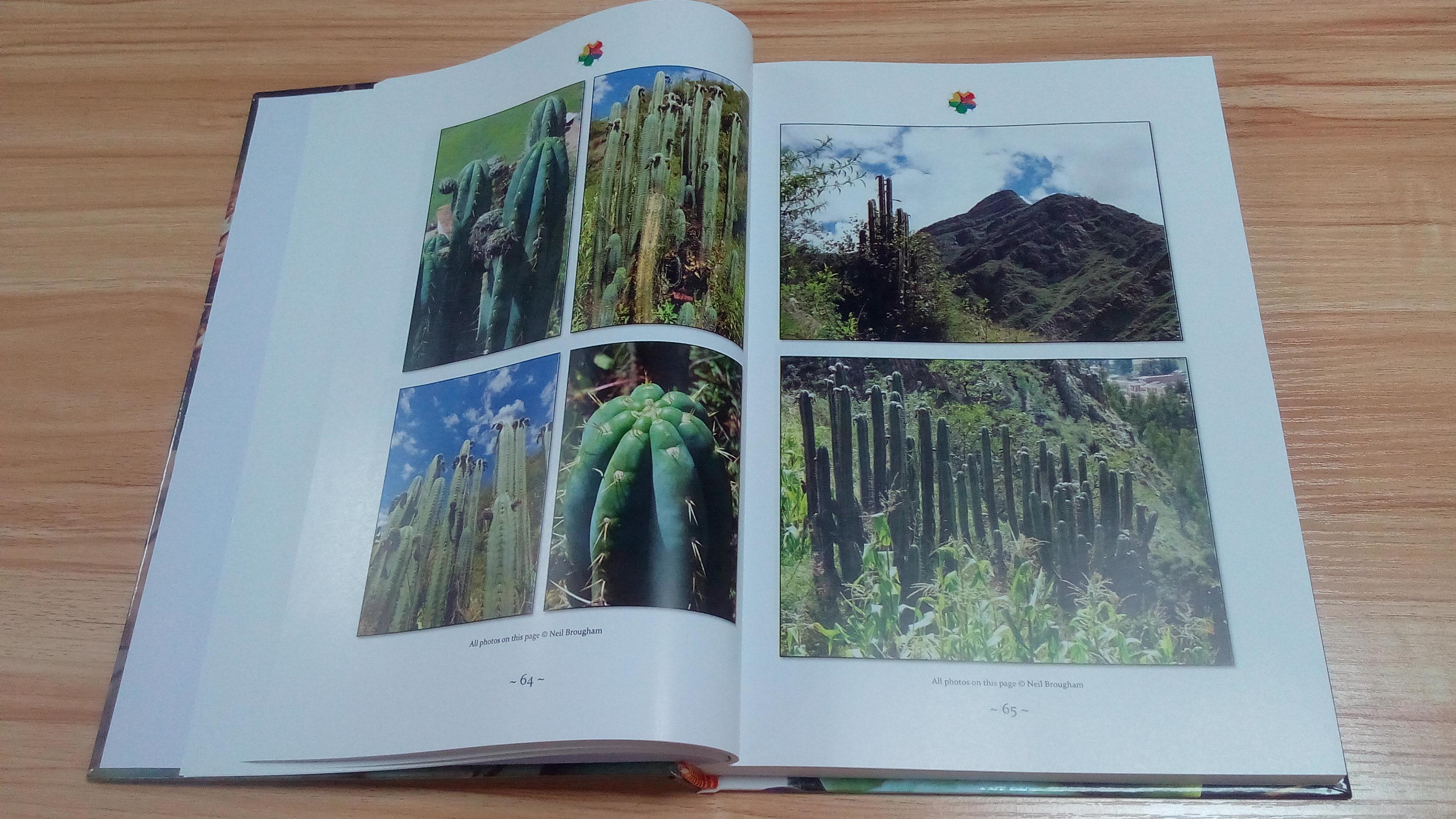 Trichocereus book Volume 1 Echinopsis cactus book 9